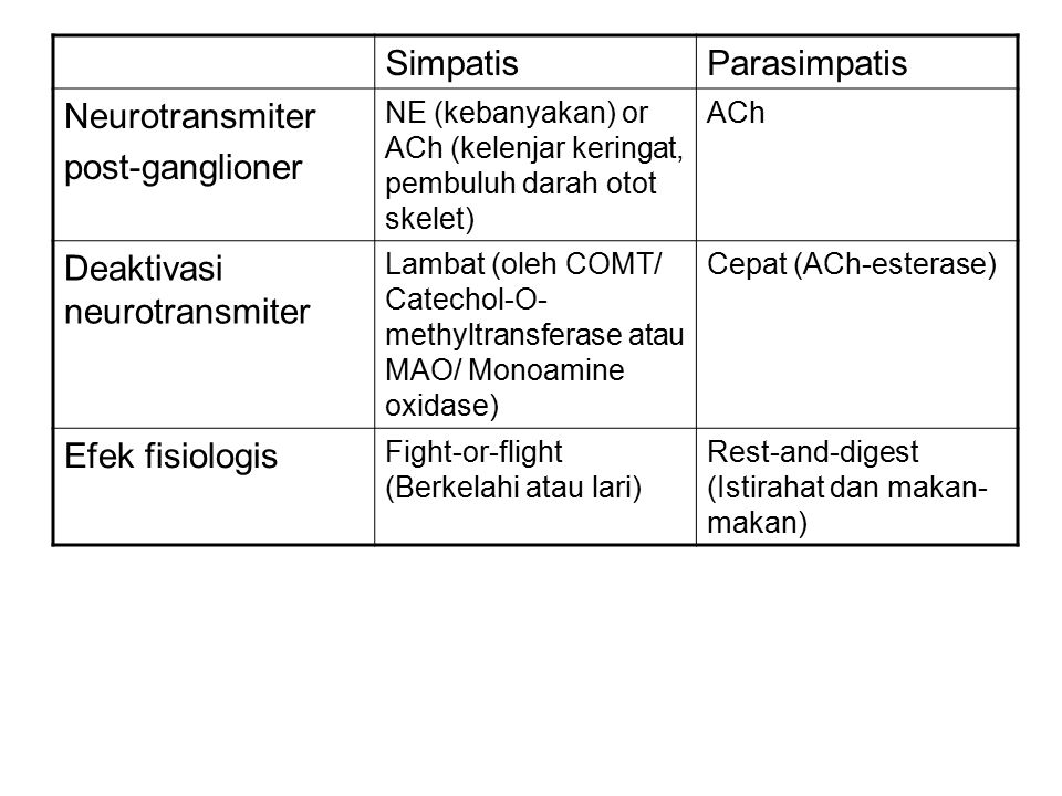 Deaktivasi neurotransmiter
