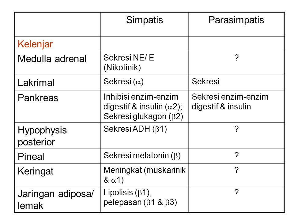 Jaringan adiposa/ lemak