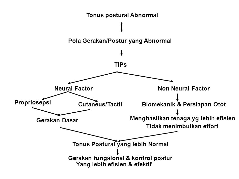 Tonus postural Abnormal