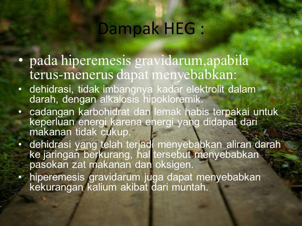 Dampak HEG : pada hiperemesis gravidarum,apabila terus-menerus dapat menyebabkan: