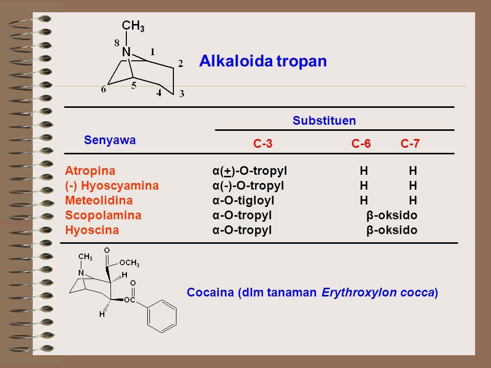Alkaloida tropan Substituen Senyawa C-3 C-6 C-7