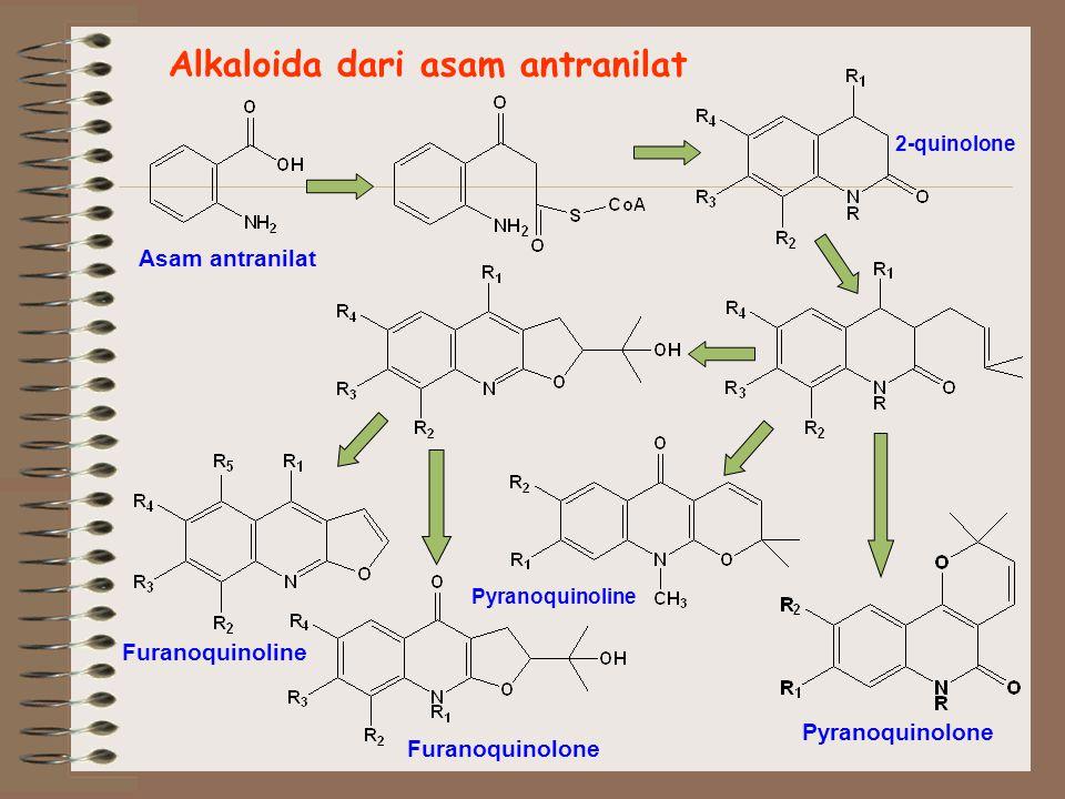 Alkaloida dari asam antranilat