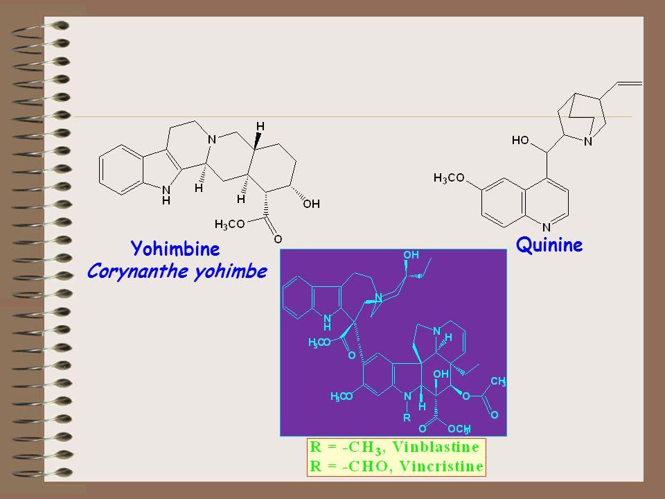 Yohimbine Corynanthe yohimbe Quinine