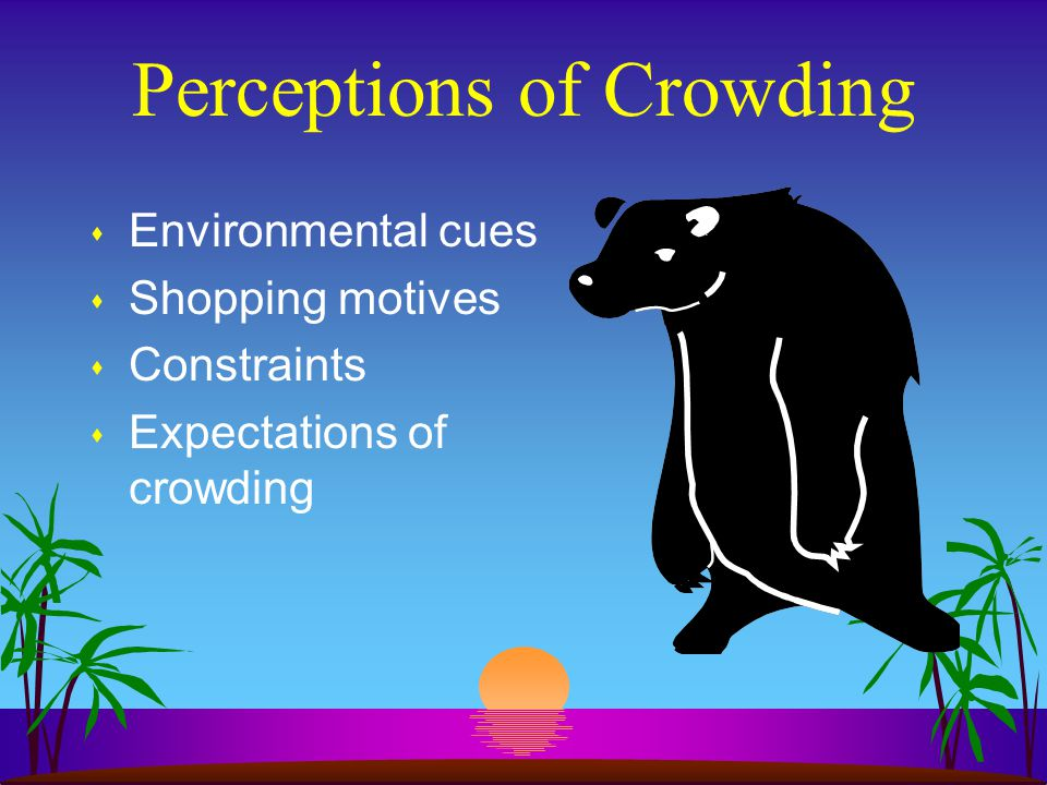 Perceptions of Crowding