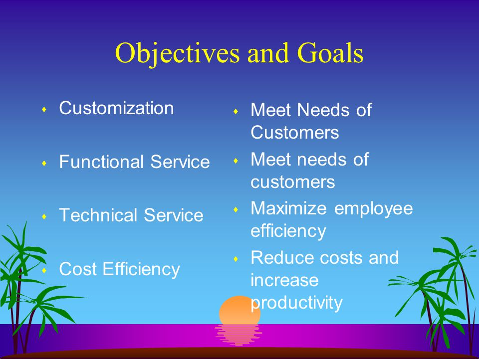 Objectives and Goals Customization Meet Needs of Customers