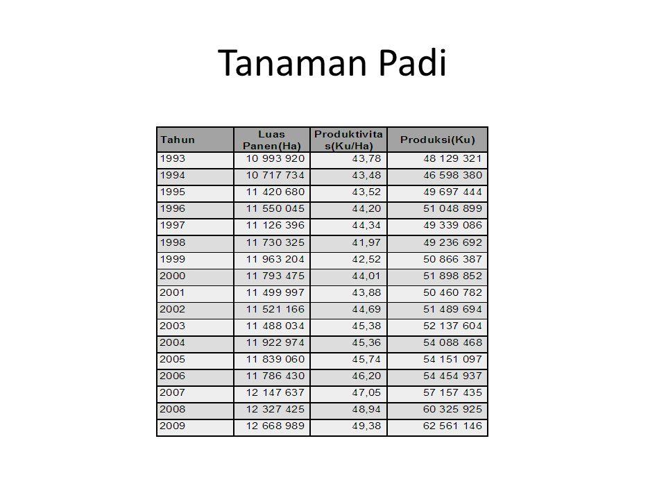 Tanaman Padi Sumber: BPS (website)