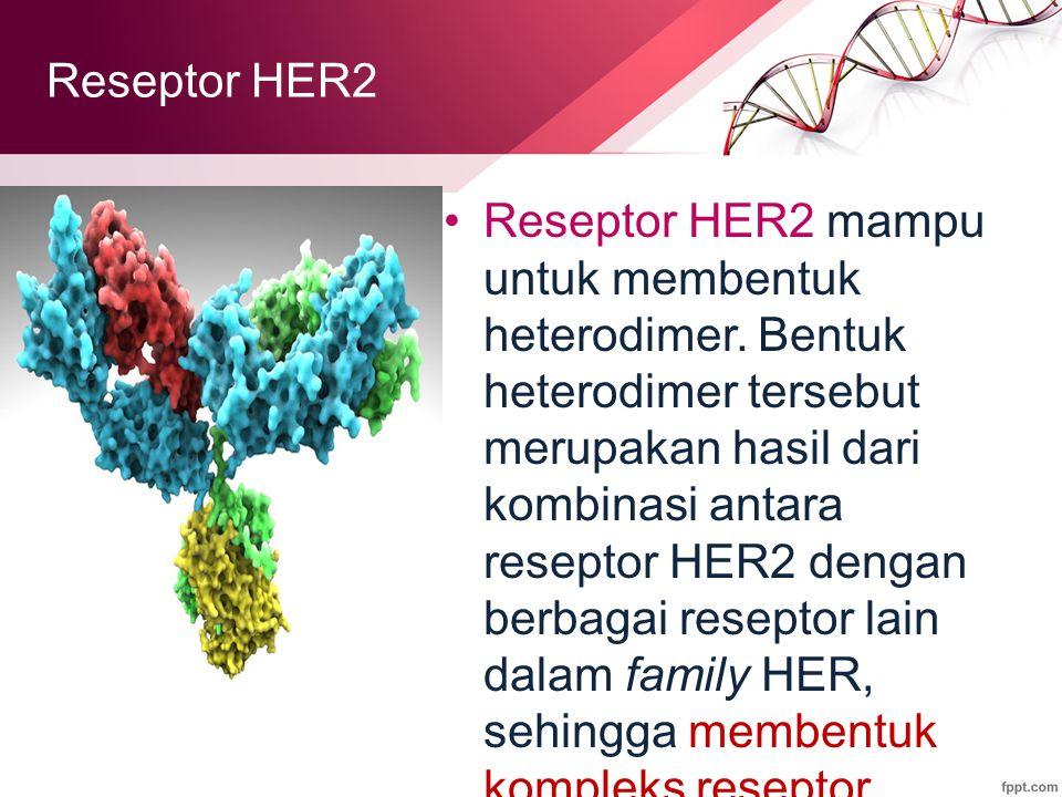 Reseptor HER2