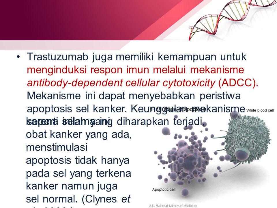 Trastuzumab juga memiliki kemampuan untuk menginduksi respon imun melalui mekanisme antibody-dependent cellular cytotoxicity (ADCC). Mekanisme ini dapat menyebabkan peristiwa apoptosis sel kanker. Keunggulan mekanisme seperti inilah yang diharapkan terjadi,