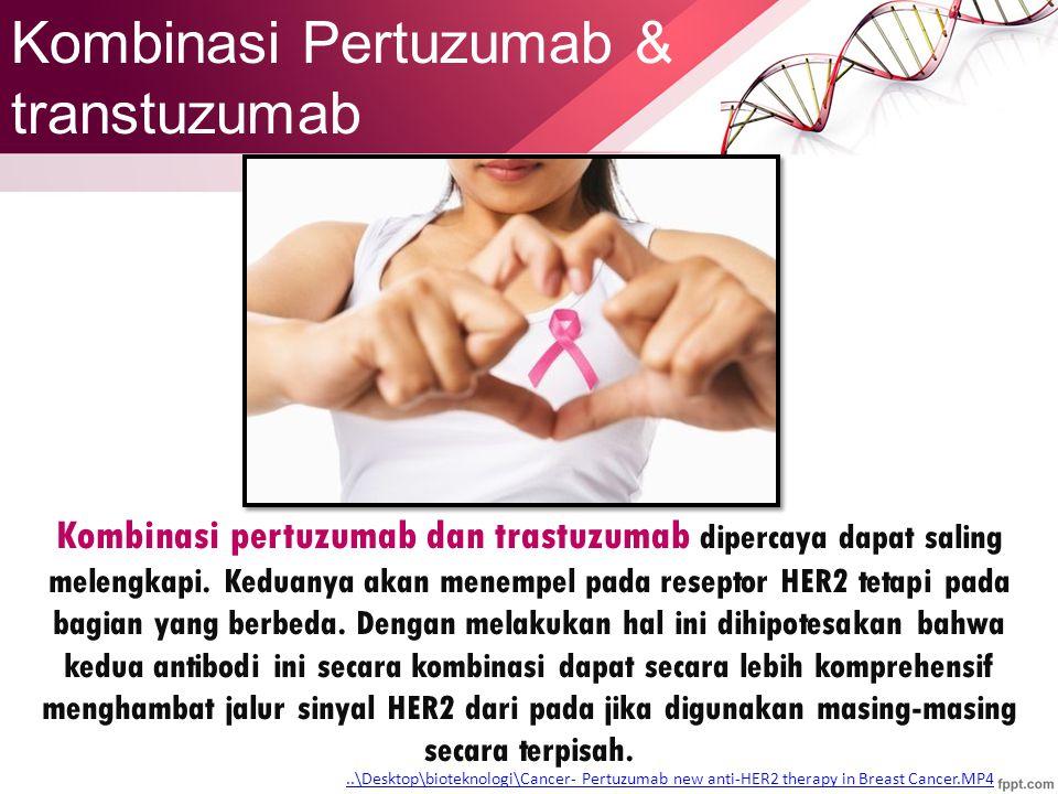Kombinasi Pertuzumab & transtuzumab