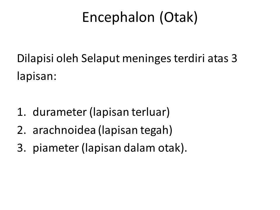 Encephalon (Otak) Dilapisi oleh Selaput meninges terdiri atas 3
