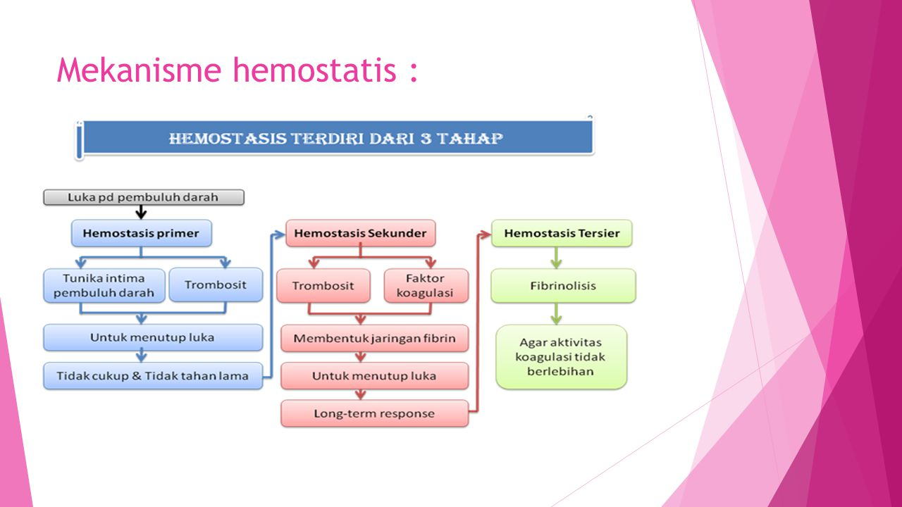 Mekanisme hemostatis :