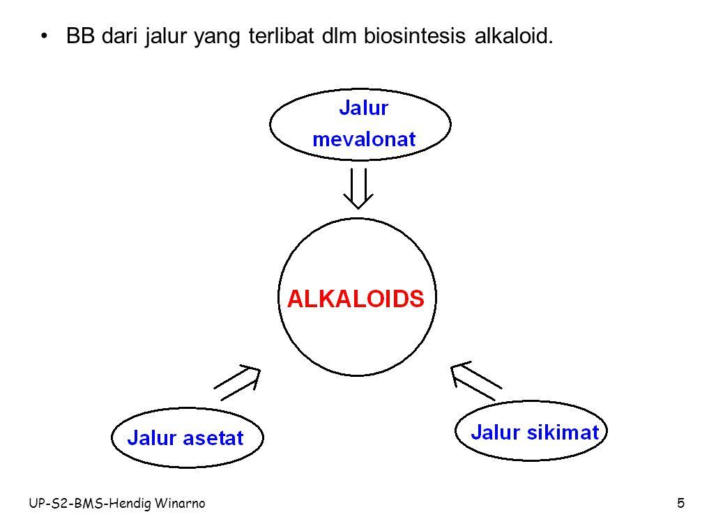 BB dari jalur yang terlibat dlm biosintesis alkaloid.
