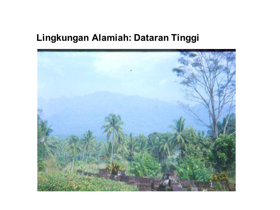Lingkungan Alamiah: Dataran Tinggi