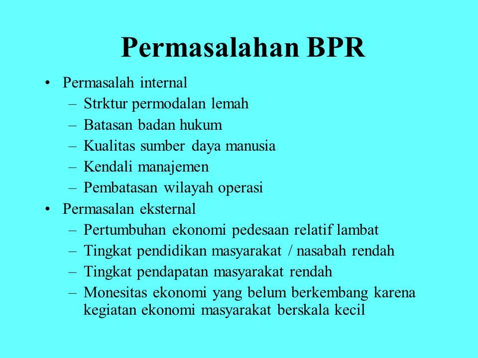 Permasalahan BPR Permasalah internal Strktur permodalan lemah
