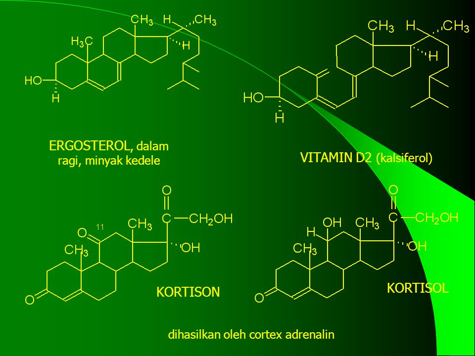 ERGOSTEROL, dalam ragi, minyak kedele VITAMIN D2 (kalsiferol)