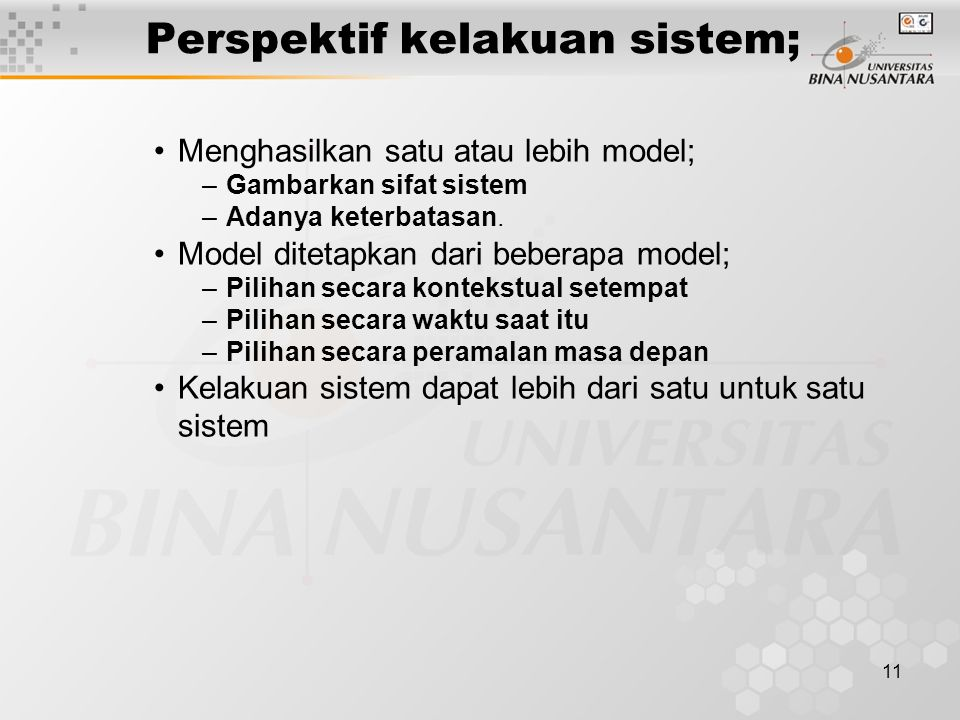 Perspektif kelakuan sistem;