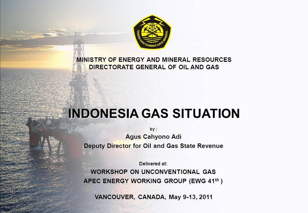 INDONESIA GAS SITUATION