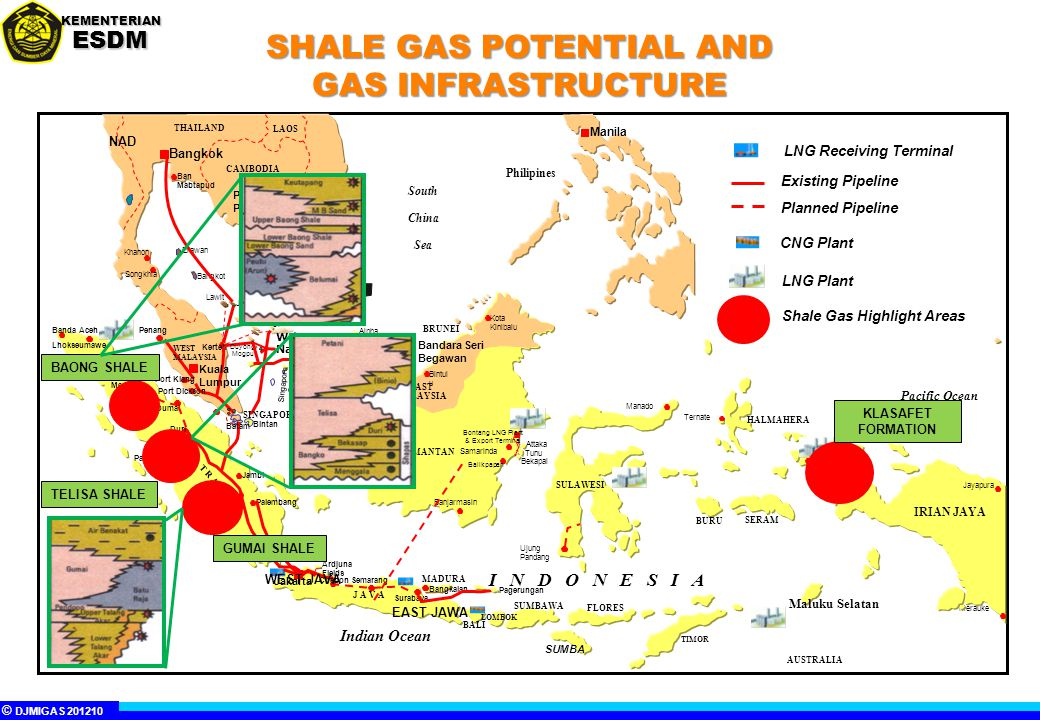 SHALE GAS POTENTIAL AND