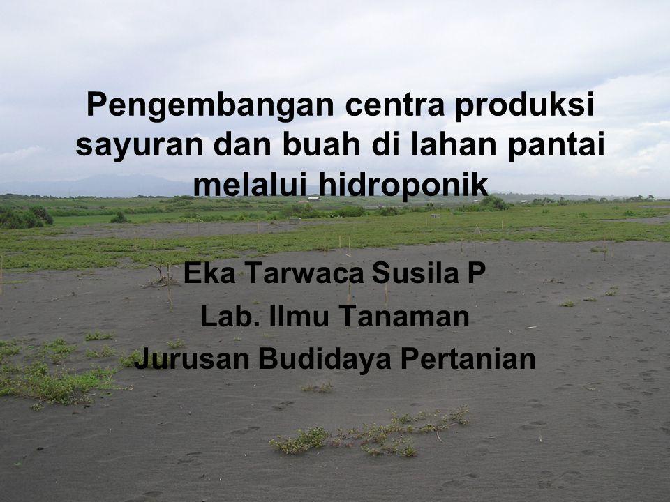 Eka Tarwaca Susila P Lab. Ilmu Tanaman Jurusan Budidaya Pertanian