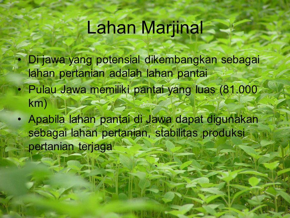 Lahan Marjinal Di jawa yang potensial dikembangkan sebagai lahan pertanian adalah lahan pantai. Pulau Jawa memiliki pantai yang luas (81.000 km)