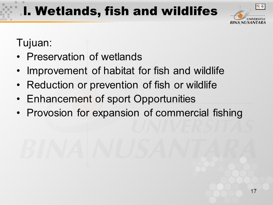 l. Wetlands, fish and wildlifes