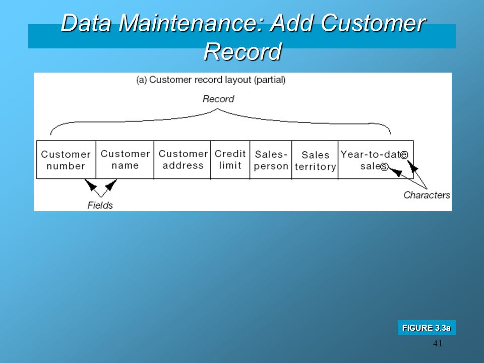Data Maintenance: Add Customer Record