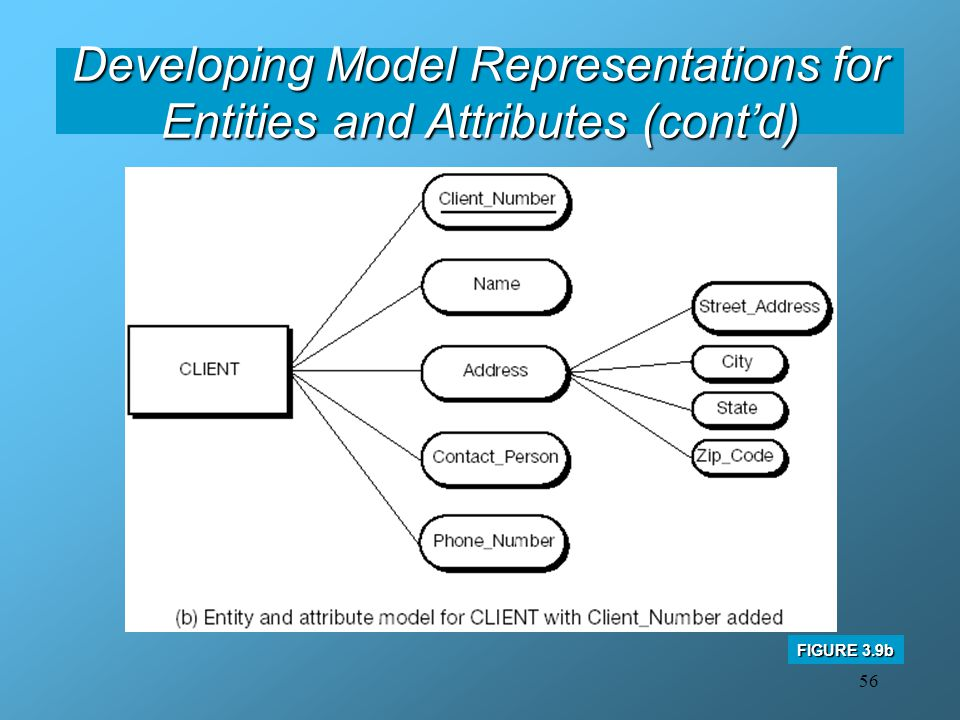 Developing Model Representations for Entities and Attributes (cont'd)
