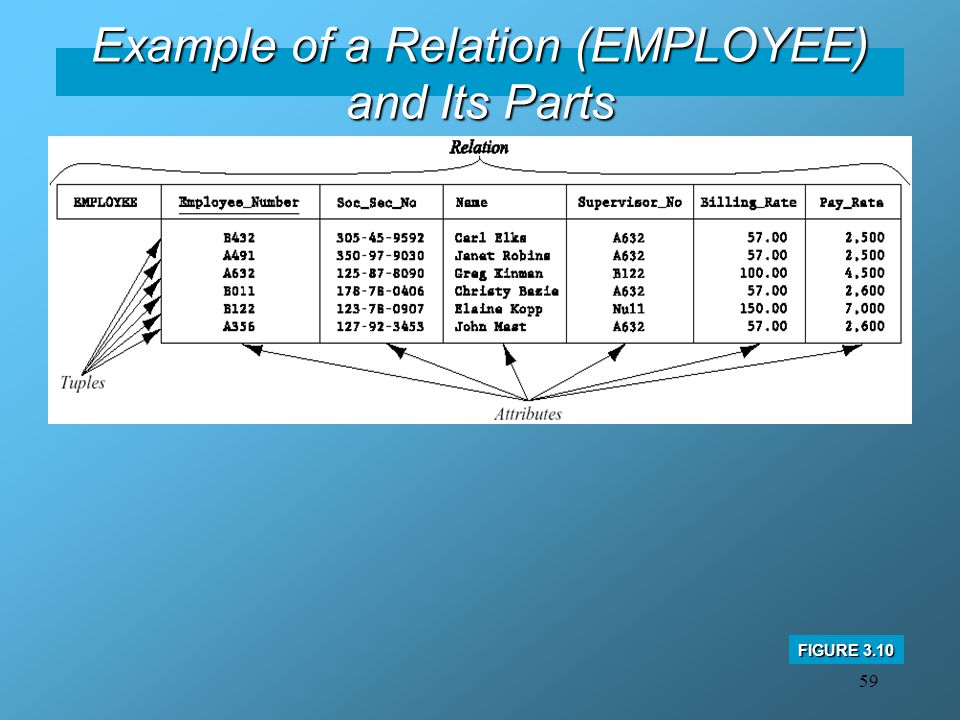 Example of a Relation (EMPLOYEE) and Its Parts