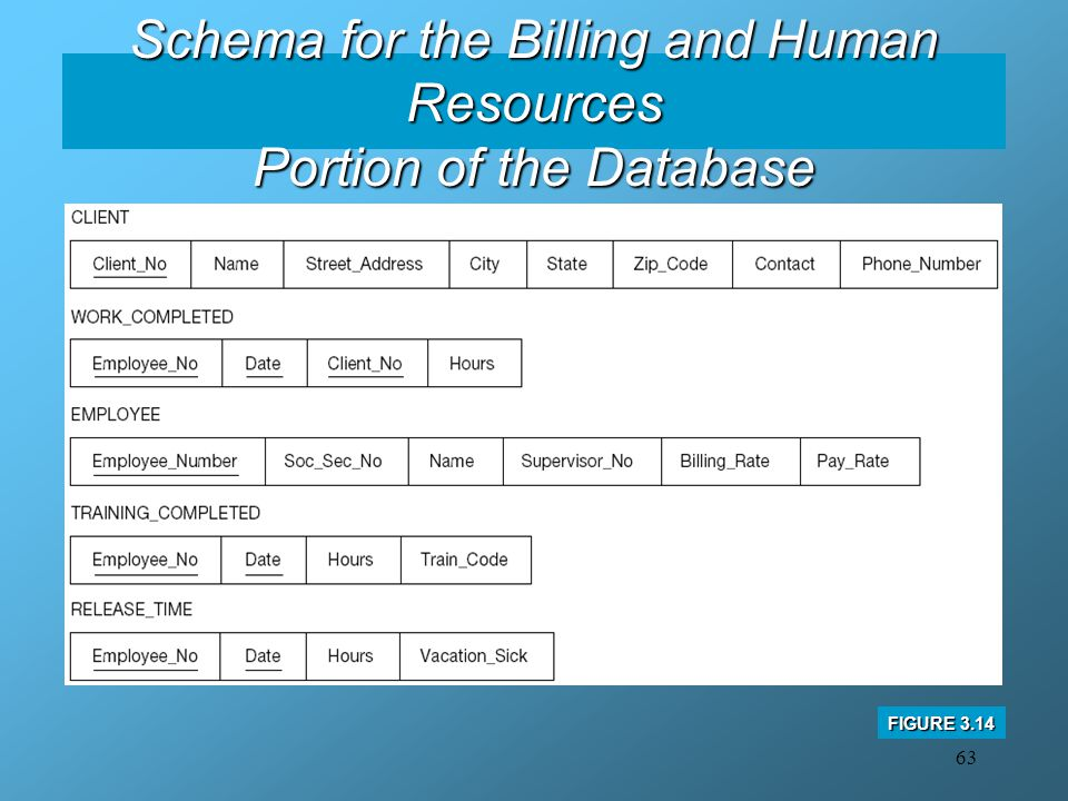 Schema for the Billing and Human Resources Portion of the Database