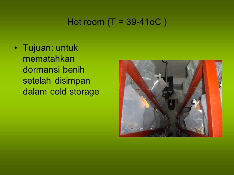 Hot room (T = 39-41oC ) Tujuan: untuk mematahkan dormansi benih setelah disimpan dalam cold storage