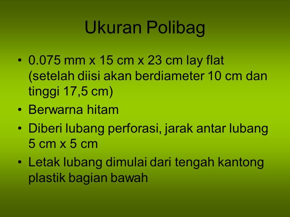 Ukuran Polibag 0.075 mm x 15 cm x 23 cm lay flat (setelah diisi akan berdiameter 10 cm dan tinggi 17,5 cm)