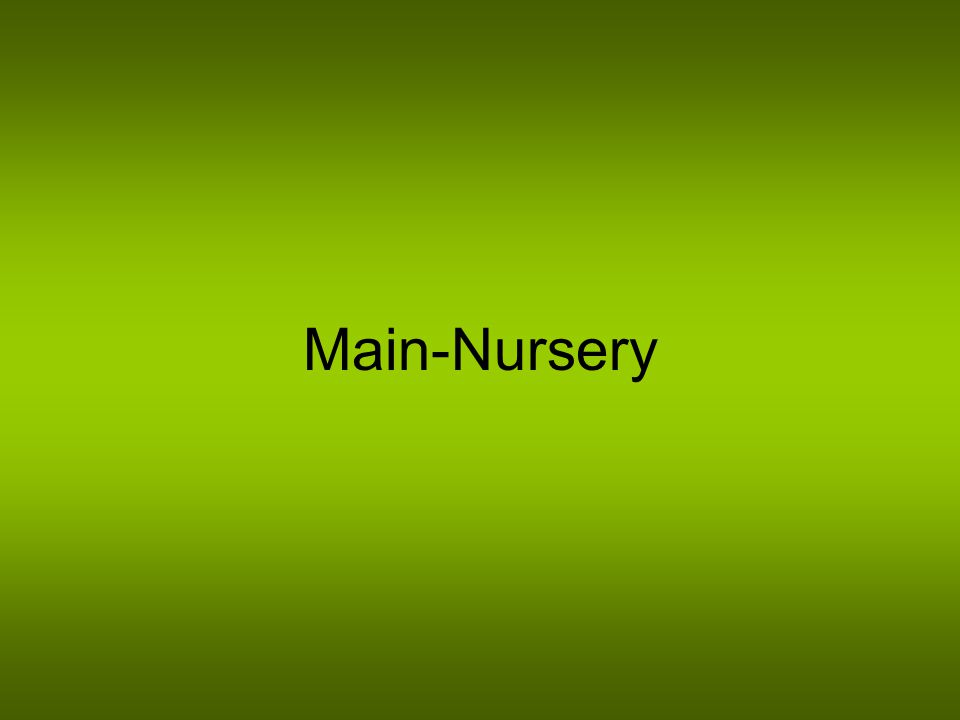 Main-Nursery