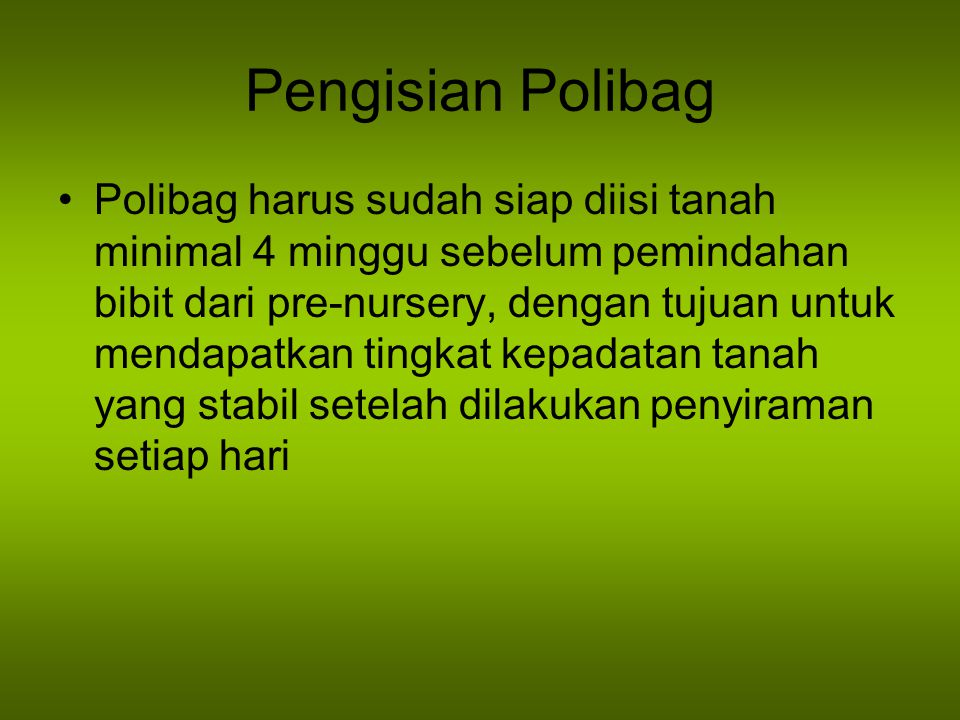 Pengisian Polibag