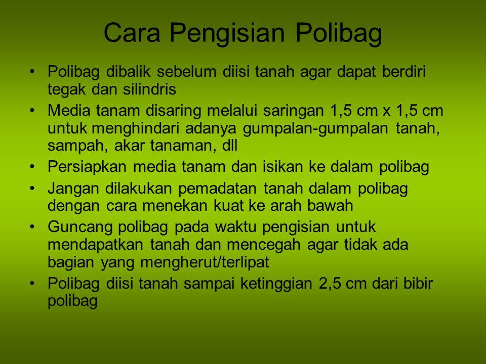 Cara Pengisian Polibag