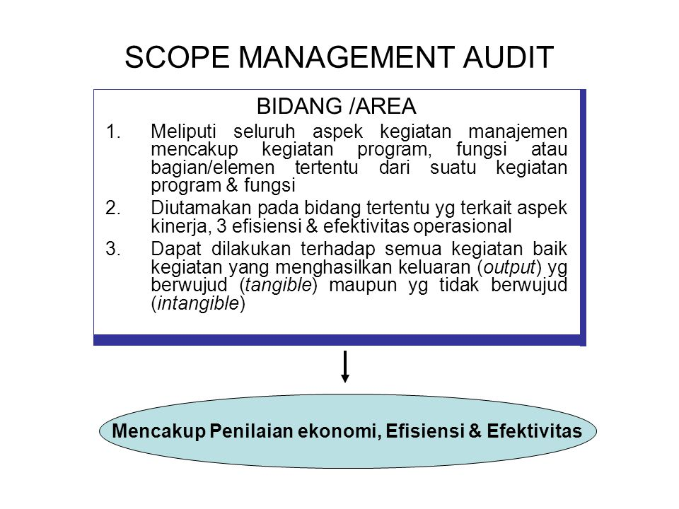 SCOPE MANAGEMENT AUDIT
