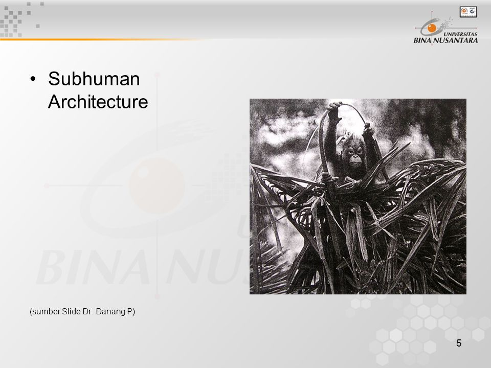 Subhuman Architecture