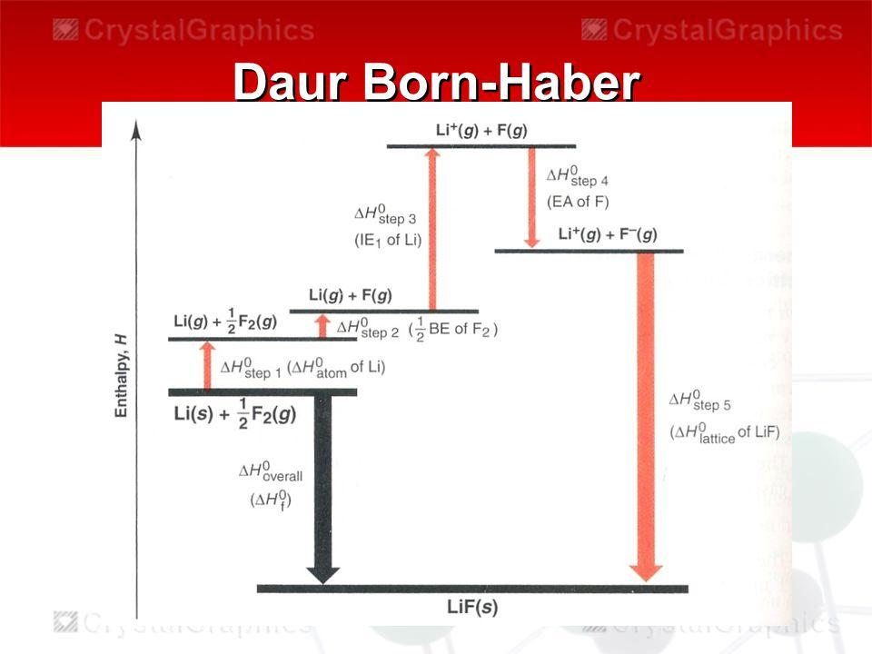 Daur Born-Haber