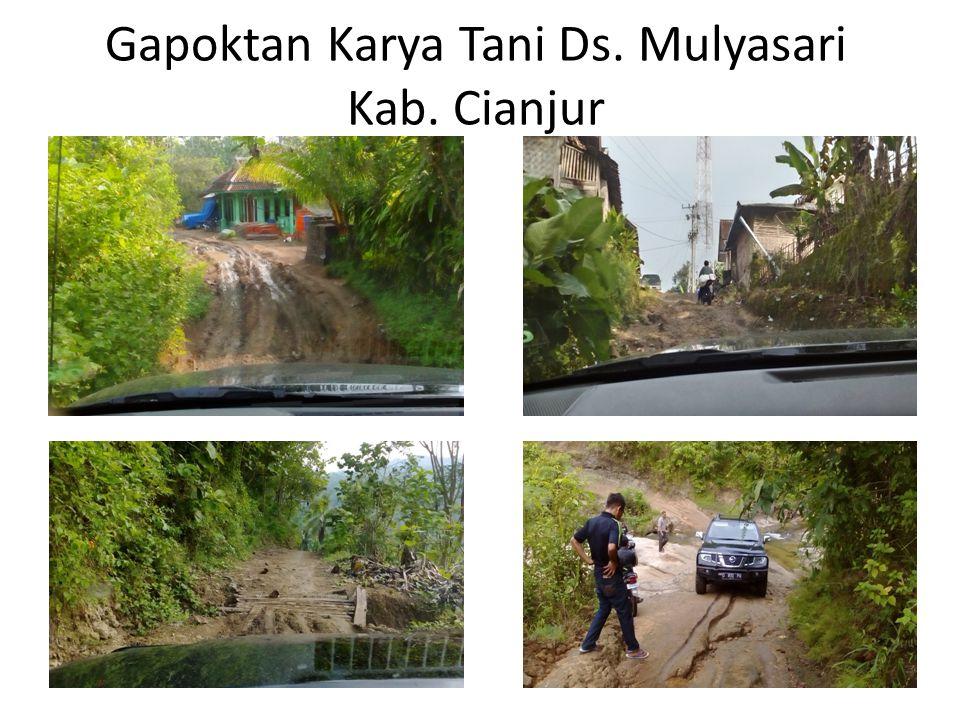Gapoktan Karya Tani Ds. Mulyasari Kab. Cianjur