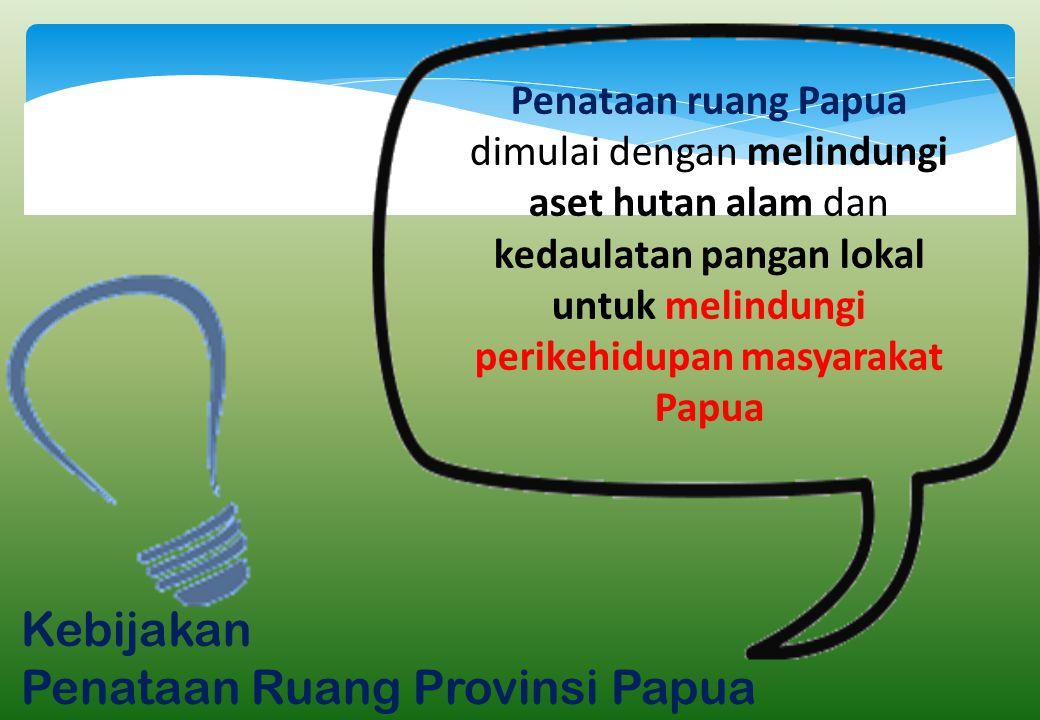 Penataan Ruang Provinsi Papua