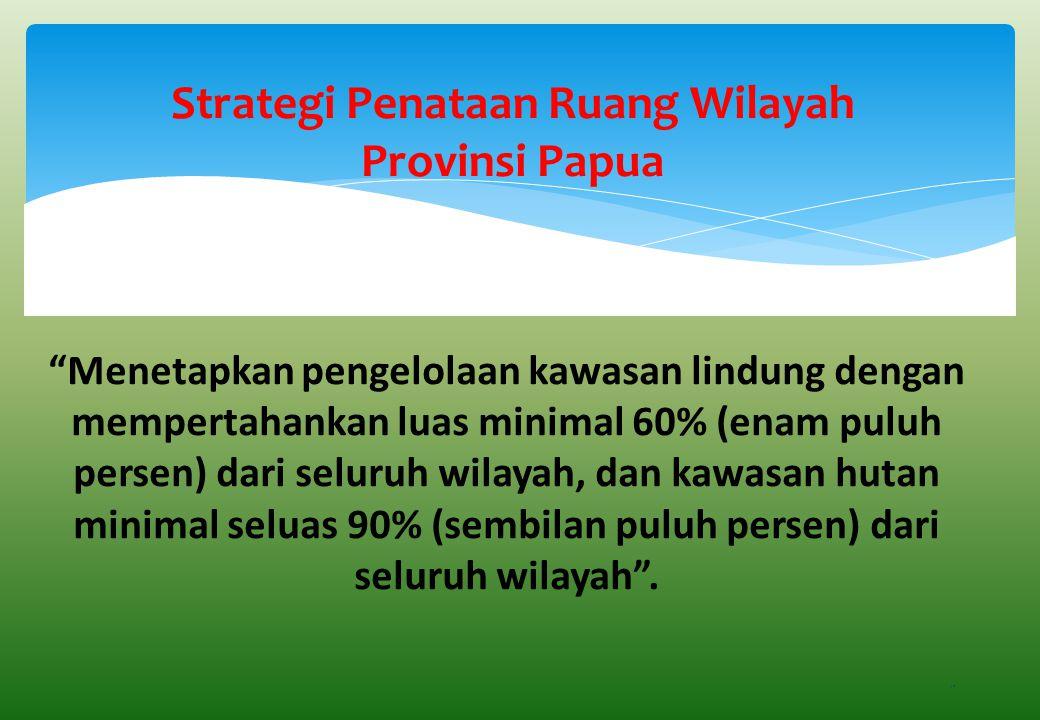 Strategi Penataan Ruang Wilayah Provinsi Papua