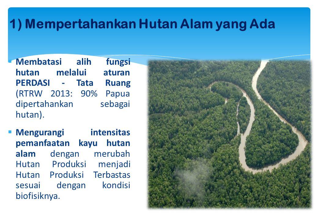 1) Mempertahankan Hutan Alam yang Ada