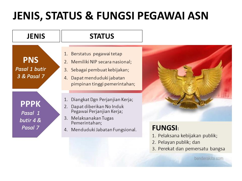 JENIS, STATUS & FUNGSI PEGAWAI ASN