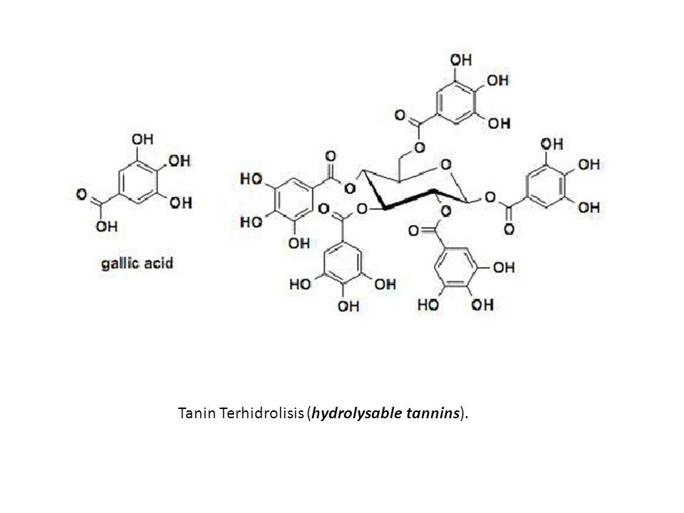 Tanin Terhidrolisis (hydrolysable tannins).