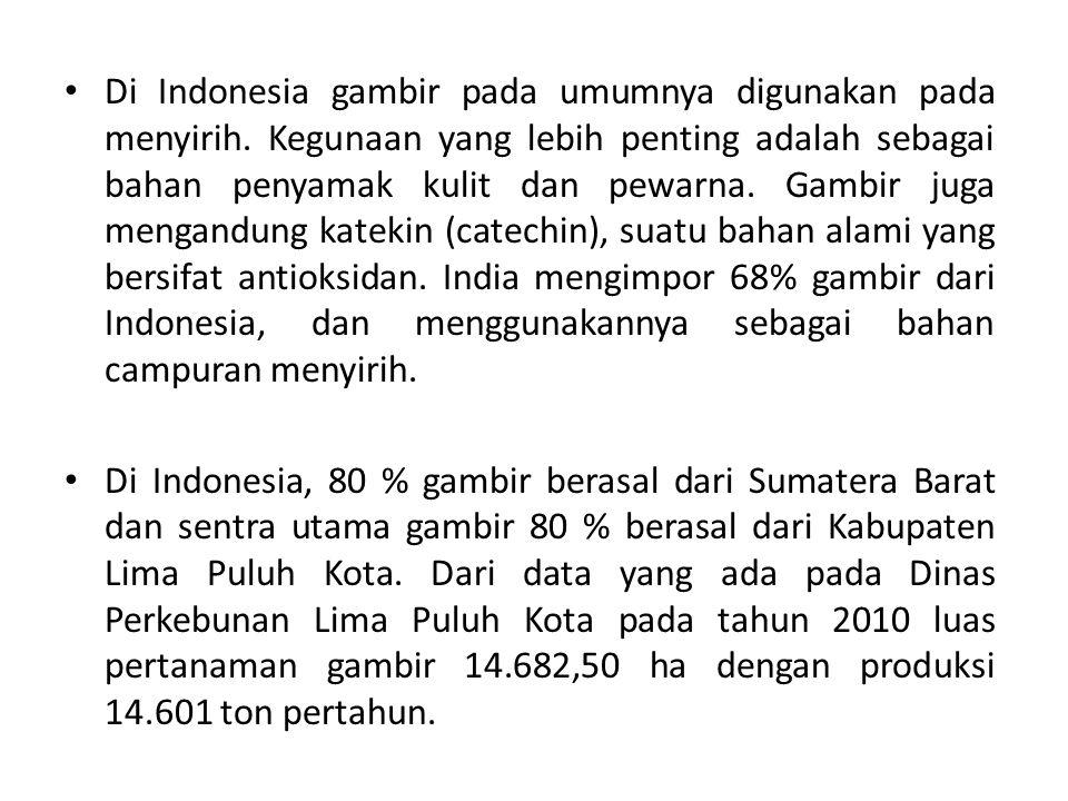 Di Indonesia gambir pada umumnya digunakan pada menyirih