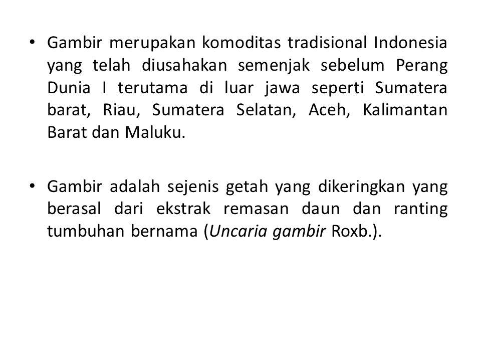 Gambir merupakan komoditas tradisional Indonesia yang telah diusahakan semenjak sebelum Perang Dunia I terutama di luar jawa seperti Sumatera barat, Riau, Sumatera Selatan, Aceh, Kalimantan Barat dan Maluku.