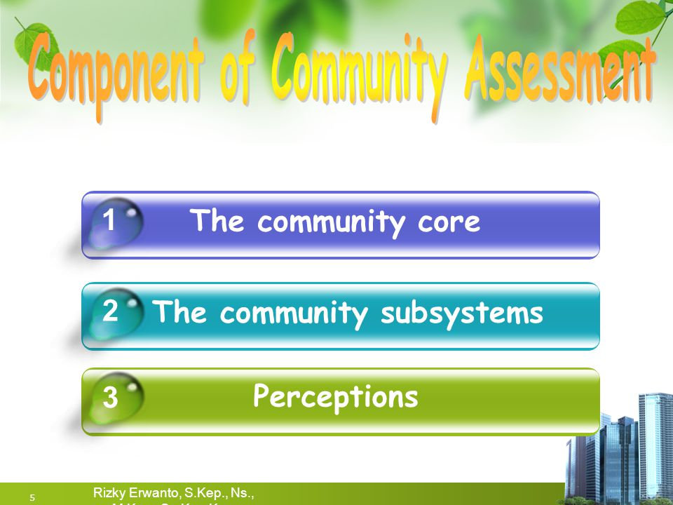 Component of Community Assessment The community subsystems