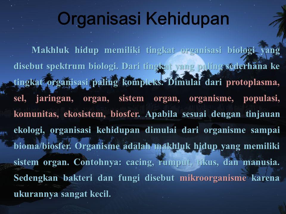 Organisasi Kehidupan