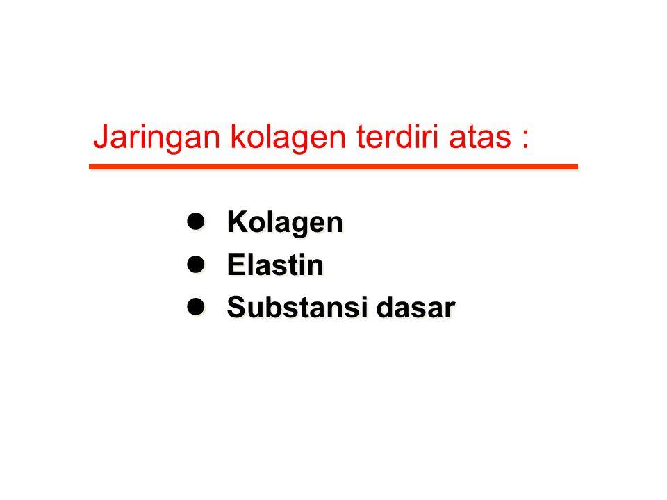 Jaringan kolagen terdiri atas :