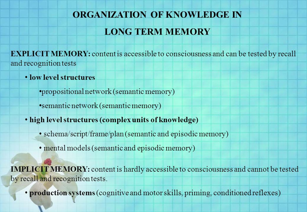 ORGANIZATION OF KNOWLEDGE IN