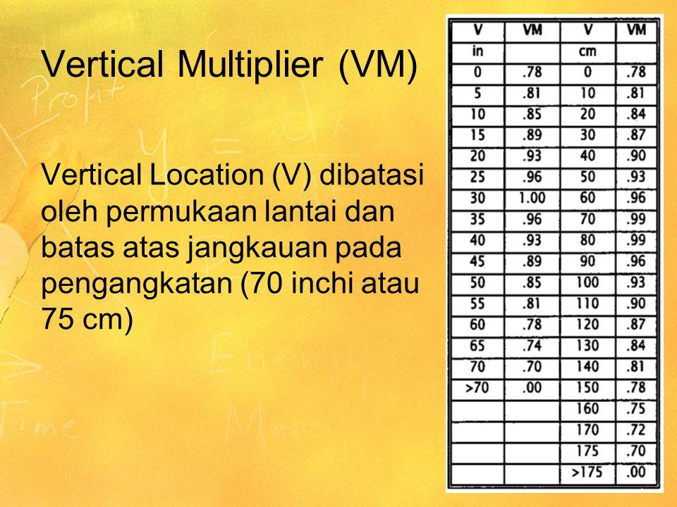 Vertical Multiplier (VM)